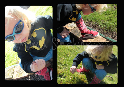 Sunny Day Bug Hunting