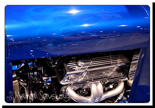 Photo Challenge: Color-Blue