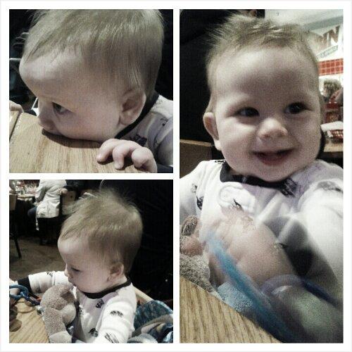 Baby Sid Highchair