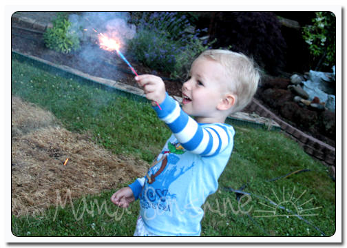 Ian's first time with sparklers