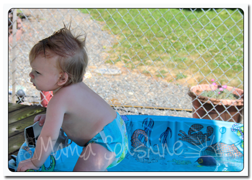 Baby Sid has figured out he can crawl out of the pool