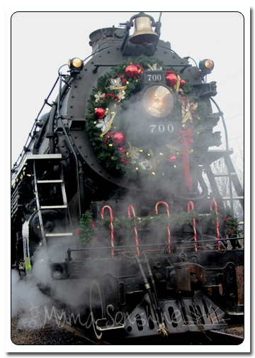 12DaysofXmas2013_train10