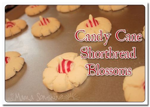 MS_CandayCaneShortbreadBlossoms_05