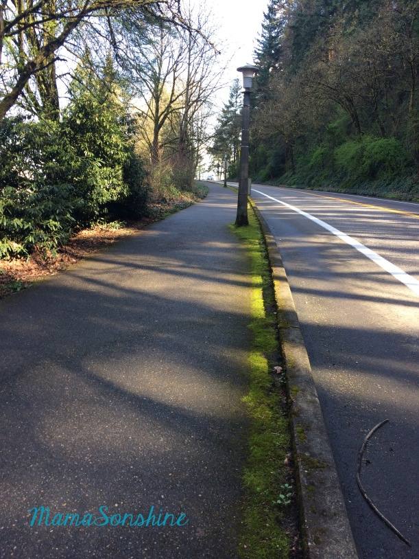 Here is the start of the big hill during a training run