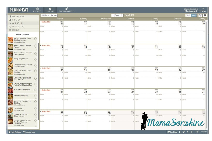 The planning calendar