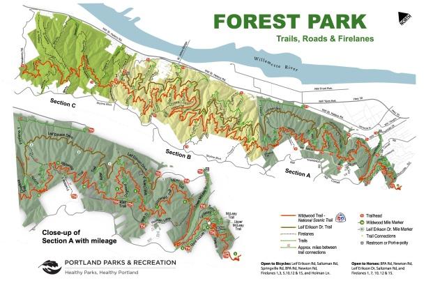 Forest Park Trails Printable Map